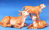 5 Inch Scale Ox Family by Fontanini