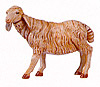 18 Inch Scale Standing Sheep Figure by Fontanini