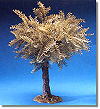5 Inch Scale Large Olive Tree by Fontanini