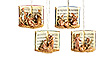 Fontanini Set of 4 Nativity Song Book Ornaments - Available July 2015